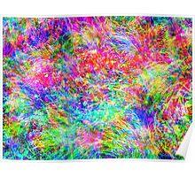 Rainbow Meadow Poster