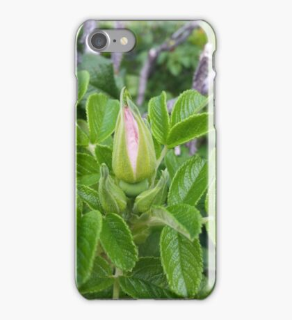 Pink rosebud iPhone Case/Skin