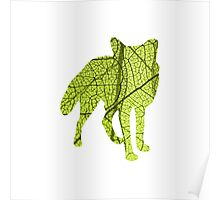 Green Leaf Fox Poster