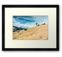 Lone Tree at Yosemite National Park Framed Print