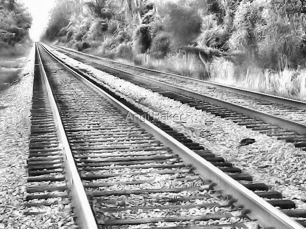 Lonely tracks by Angi Baker
