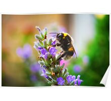 Humble Bumblebee Poster
