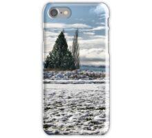 Snowman Tekapo iPhone Case/Skin