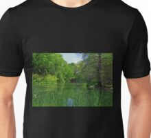 A Noble Lake Afternoon Unisex T-Shirt