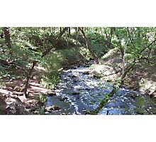 Falling Creek Falls Photographic Print