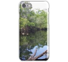 Oleno State Park iPhone Case/Skin