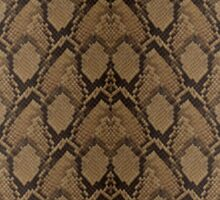 Bronze Brown and Black Python Snake Skin Reptile Scales Sticker