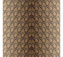Bronze Brown and Black Python Snake Skin Reptile Scales Photographic Print