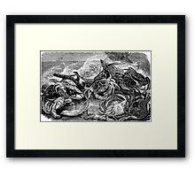 Crab Fight Framed Print