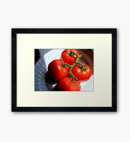 Red Tomatoe Cluster Framed Print