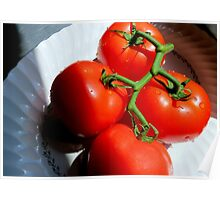 Red Tomatoe Cluster Poster
