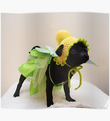 Tinkerbell Pug Puppy Poster