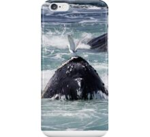 Feeding Whales iPhone Case/Skin