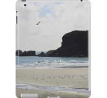 Tauranga Bay, New Zealand iPad Case/Skin