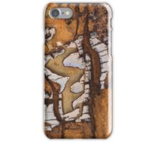 Colours of the Desert iPhone Case/Skin
