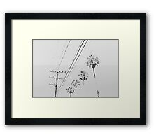 Palms and Wires Framed Print