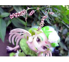 Batsy and Pink Flowers ♥ Photographic Print