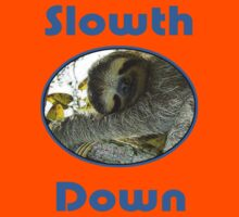 Cute Sloth T-Shirt - Slow Down & Take It Easy - Tee Kids Clothes