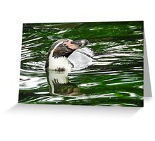 Penguin in emerald water Greeting Card