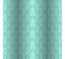 Tiffany Aqua Blue and White Python Snake Skin Reptile Scales Photographic Print