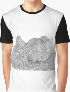 Break up in the mountains Graphic T-Shirt
