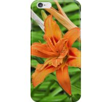 Lilly flower iPhone Case/Skin