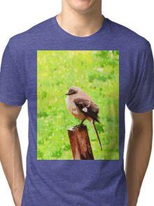 The Bird Painting  Tri-blend T-Shirt