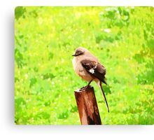 The Bird Painting  Canvas Print