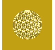 Flower of Life – Golds & White Photographic Print