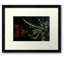 Mysterious Garden Framed Print