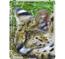 Sleeping serval  iPad Case/Skin