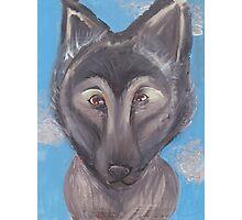 Wolf Dog Hybrid  Photographic Print