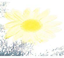 Sun Flair Photographic Print