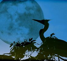 Blue Heron, Blue Moon by AuntDot