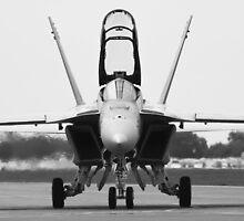 McDonnell Douglas F/A-18 Hornet by Z3roCool