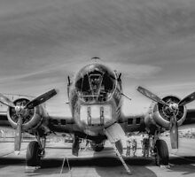 Flying Fortress by Sue Morgan
