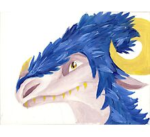 Blue Feathered Dragon Photographic Print