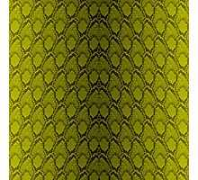 Golden Yellow and Black Python Snake Skin Reptile Scales Photographic Print