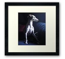 So Precious a Moment Framed Print