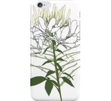 Heart my Cleome iPhone Case/Skin
