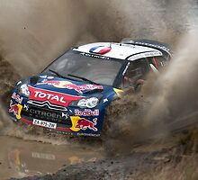 World Rally Car - Sebastien Loeb by Z3roCool