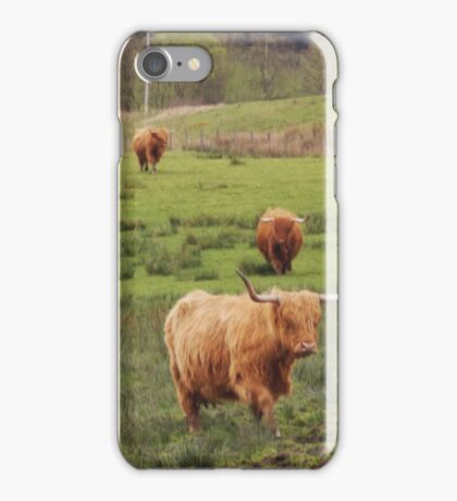 Hairy cows iPhone Case/Skin