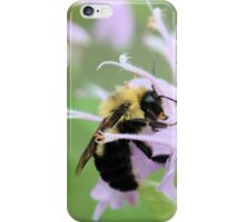 Bee Balm is well named iPhone Case/Skin