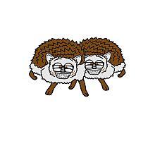 2 freunde team nerd geek hornbrille pickel freak spange schlau intelligent grinsen lustig comic cartoon süßer kleiner niedlicher igel  Photographic Print