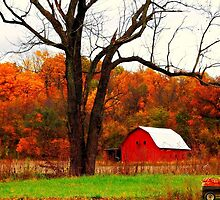An Indiana Autumn by Grinch/R. Pross