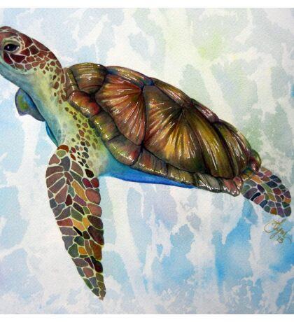 Sea Turtle Dream Sticker