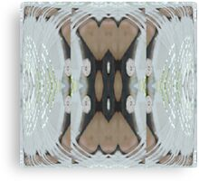 Bow Light Canvas Print