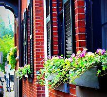 Flower Boxes, Boston by Amanda Vontobel Photography/Random Fandom Stuff
