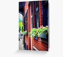 Flower Boxes, Boston Greeting Card