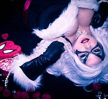 Black Cat Spidey box by AlyChu